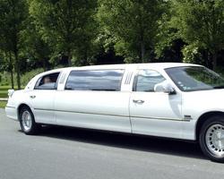 V-Cab - Ceremoniewagens